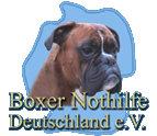 Empfehlung: Organisation Boxer Nothilfe Deutschland e. V.