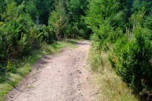 Abmahnung Fury Road